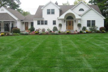 lawn garden care. Interior Design Ideas. Home Design Ideas